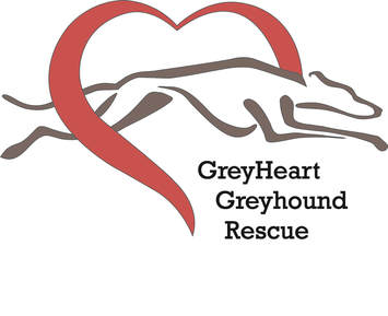 GreyHeart Greyhound Rescue of Michigan